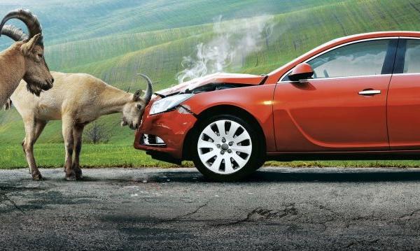 Прокат машин на Пхукете и страховка